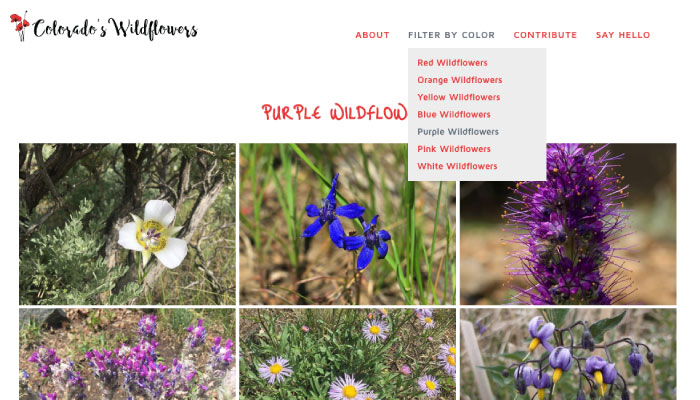 Database of the wildflowers of Colorado